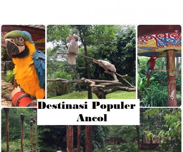 Taman Impian Jaya Ancol : 6 Destinasi Wisata Terpopuler di Ancol, Jakarta