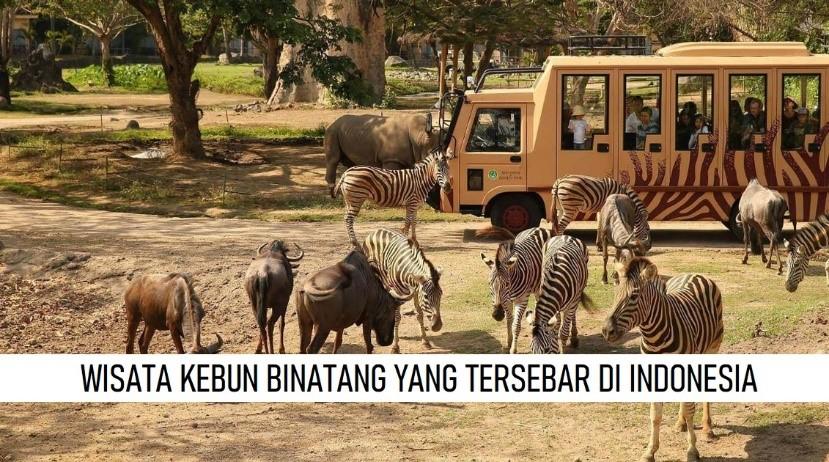 WISATA KEBUN BINATANG YANG TERSEBAR DI INDONESIA