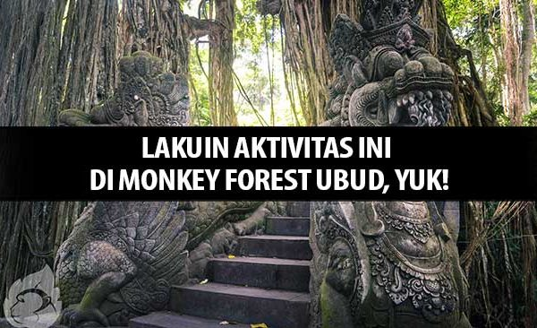 Lakuin Aktivitas ini di Monkey Forest Ubud, Yuk!